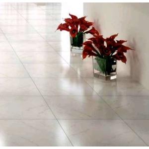 Carrelage La fenice Classica Carrara bianco nat. Blanc 60 x 60 ...