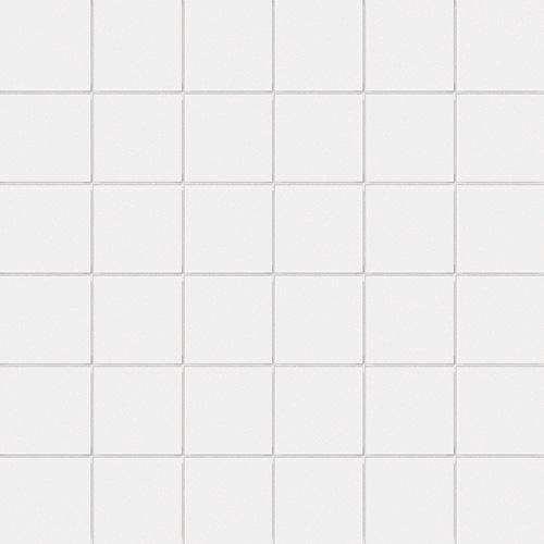 mosaique ce si  full body fluoro 5x5 sur trame blanc 30 x