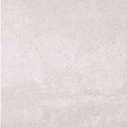 carrelage porcelanosa dover caliza mat ret blanc 80 x 80. Black Bedroom Furniture Sets. Home Design Ideas